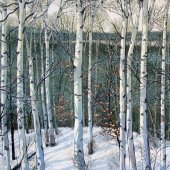 Winter Birches - SOLD